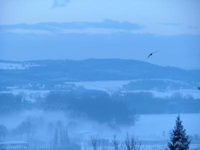 Winternebel II