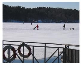 Spaziergang auf dem Eis