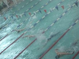 Schwimm Wettbewerb
