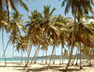 Ein Strand, nur für mich alleine...