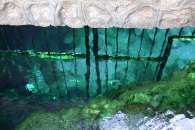 Gitter unter Wasser