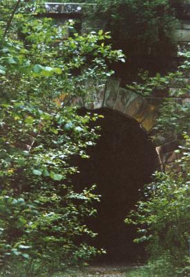 00Blumi_Flecken_Tunnel