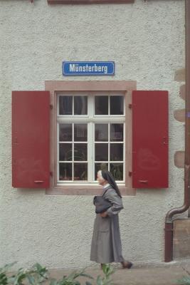 Nonne am Münsterberg