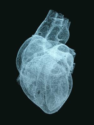 Herz (anatomisch) in Glas gelasert