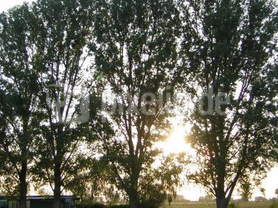 Sonne geht unter