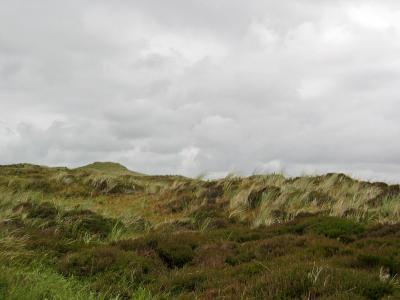 Dünen vor dem Sturm (2)