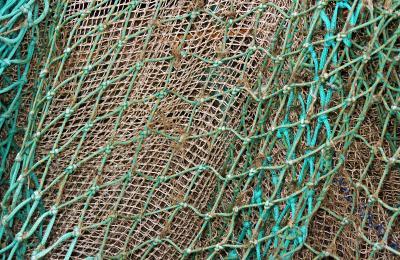 Krabbenfischernetz