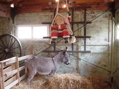 Nikolaus mit Esel