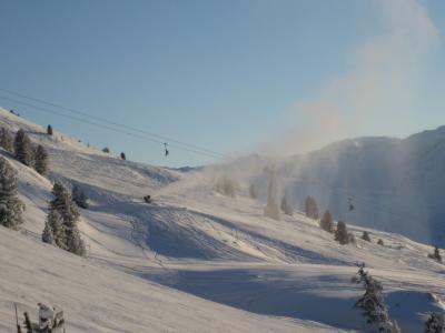Schneeweit+ hochwerfen