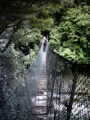 Hängebrücke nahe der Wainui-Wasserfälle (NZ)