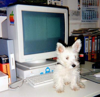 Nee, die Tastatur ist mir zu klein!