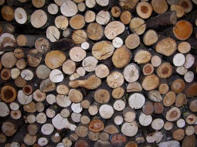 Holzstapel - Wintervorrat