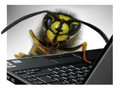 Die PC-Wespe.