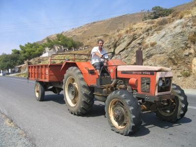 Weinbauer auf dem Weg zur Kelterei