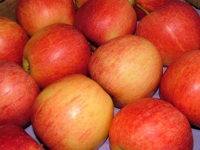Äpfel - in der Kiste