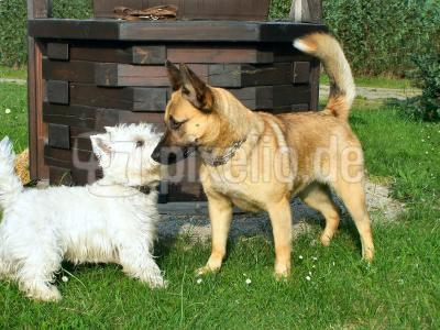 Bonny und Timmy_1