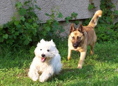 Bonny und Timmy_3