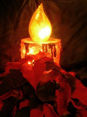 Weihnachtsstern mit Kerze