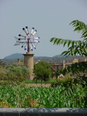 Mallorcas Windmühlen