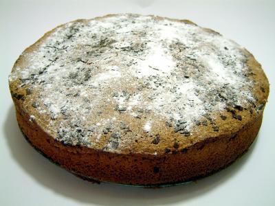 Kostenloses Foto: Nuss-Sand-Kuchen mit Schokostückchen - pixelio.de