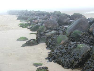 Wellenbrecher bei Ebbe