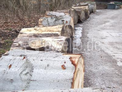 Holz am Weg