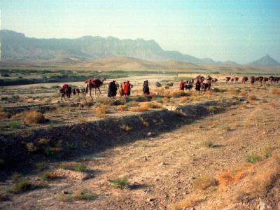 Eine Nomadenkarawane in Afghanistan