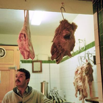 Ein Metzgerladen in der Oase Tozeur (Tunesien)