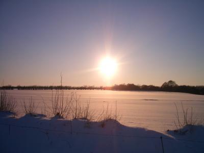 Winter um Flensburg