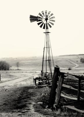 Ranch in Canada