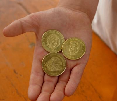 Hand voll Münzen