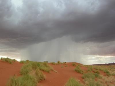 Regen in der Wüste