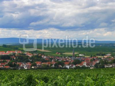 Ein Ort in Rheinhessen