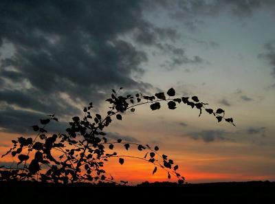 Sonne geht... (5)