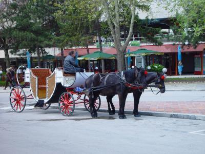 Pferdekutsche in Albena