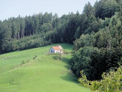 Bergbauerngehöft bei Heiden/Schweiz
