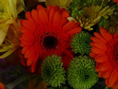 Blumensalat