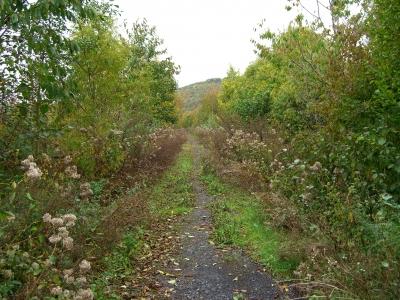 Herbstweg 1