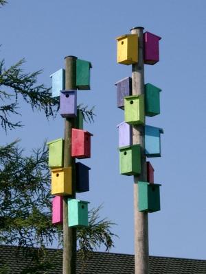 Reihenhaus für Vögel