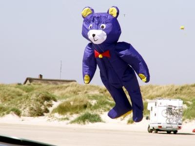 Der fliegende Bär