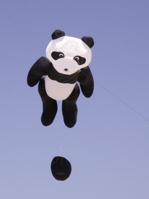 Fliegender Panda Bär