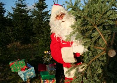 Weihnachtsmann im Wald