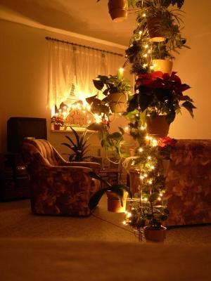 Weihnachten bei mir zu Hause