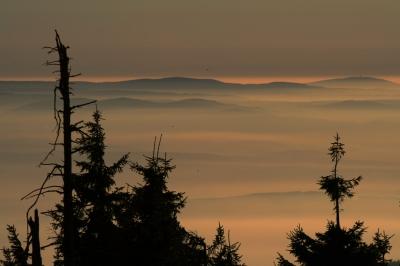 Böhmisches Becken im Nebel