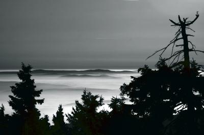 Böhmen im Nebel