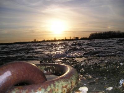 * Abendliches Rheinufer *