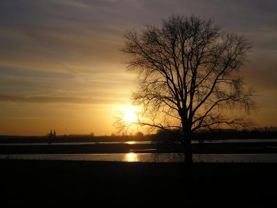 Abendidylle am Rhein