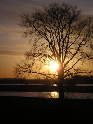 Abendidylle am Rhein2