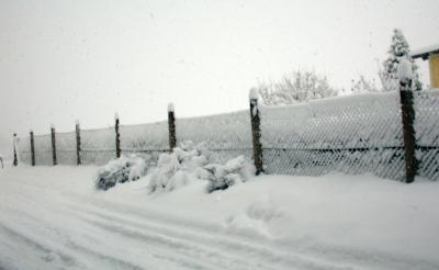 Schneelast am Zaun