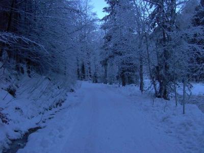 Winterliche Pöllatschlucht